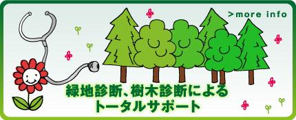 緑地診断、樹木診断によるトータルサポート